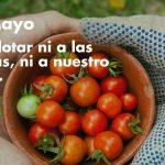 #DíaDelTrabajo: En Andalucía hay muchas oportunidades frente al paro