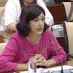 Carmen Molina consigue un sí unánime al refuerzo de la red ferroviaria de Andalucía