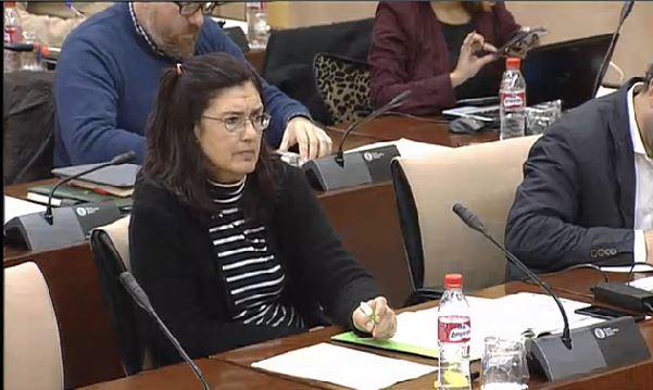 Carmen Molina durante su intervención en la Comisión.