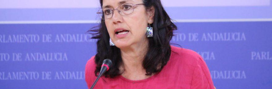 Carmen Molina, en rueda de prensa en el Parlamento.