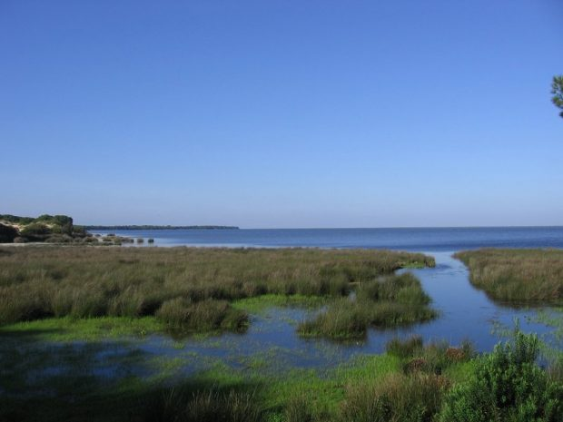 Vista de las Marismas de Doñana, uno de los Parques Nacionales andaluces.
