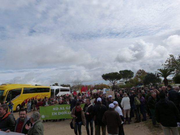 Cientos de personas se han unido este sábado a grito de Salvemos Doñana.