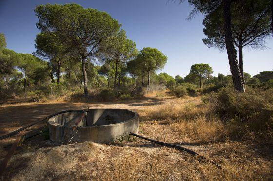 Foto de pozo en Doñana