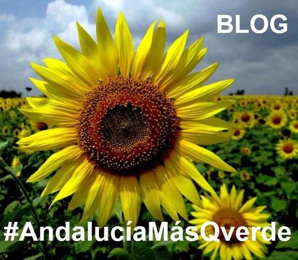 http://andaluciainformacion.es/andalucia-mas-que-verde/