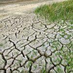 Reclamamos a los Ayuntamientos medidas valientes y de calado para prevenir la sequía