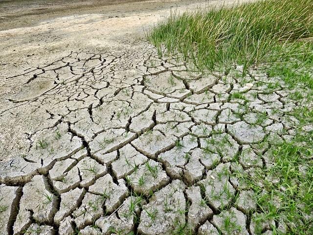 imagen foto tierra desértica por el cambio clomático