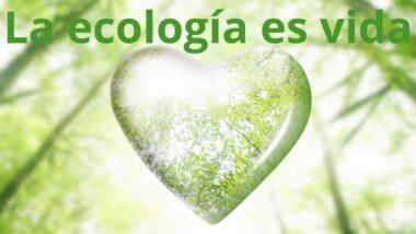 IMAGEN la ecología es vida por el día mundial de la Tierra