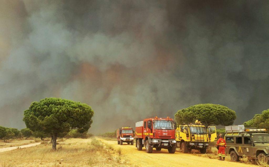 Foto de bomberos actuando ante incendio forestal
