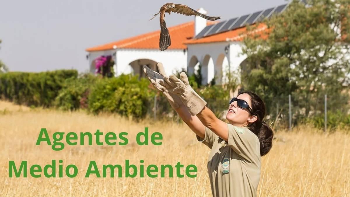 Imagen de agente de medio ambiente en Andalucía liberando un ave