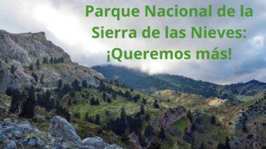 imagen portada de Parque Nacional de la Sierra de las Nieves: ¡Queremos más!