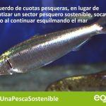 El acuerdo europeo sobre pesca tendrá un impacto negativo en las poblaciones y la sostenibilidad del empleo vinculado