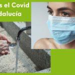 Equo Verdes apoya las medidas tomadas en Andalucía pero exige un mayor esfuerzo al gobierno andaluz