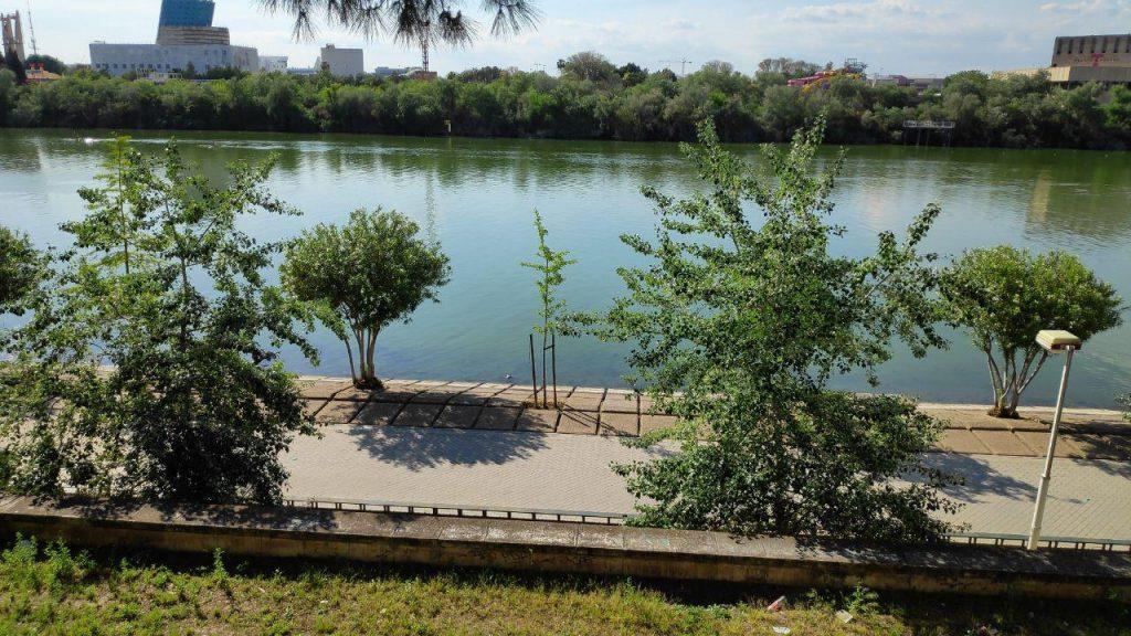 Imagen foto ribera del Guadalquivir urbanizada a su paso por Sevilla