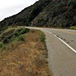 Pedimos a la Junta que prohíba el uso de glifosato en el control de la vegetación de las carreteras de su titularidad